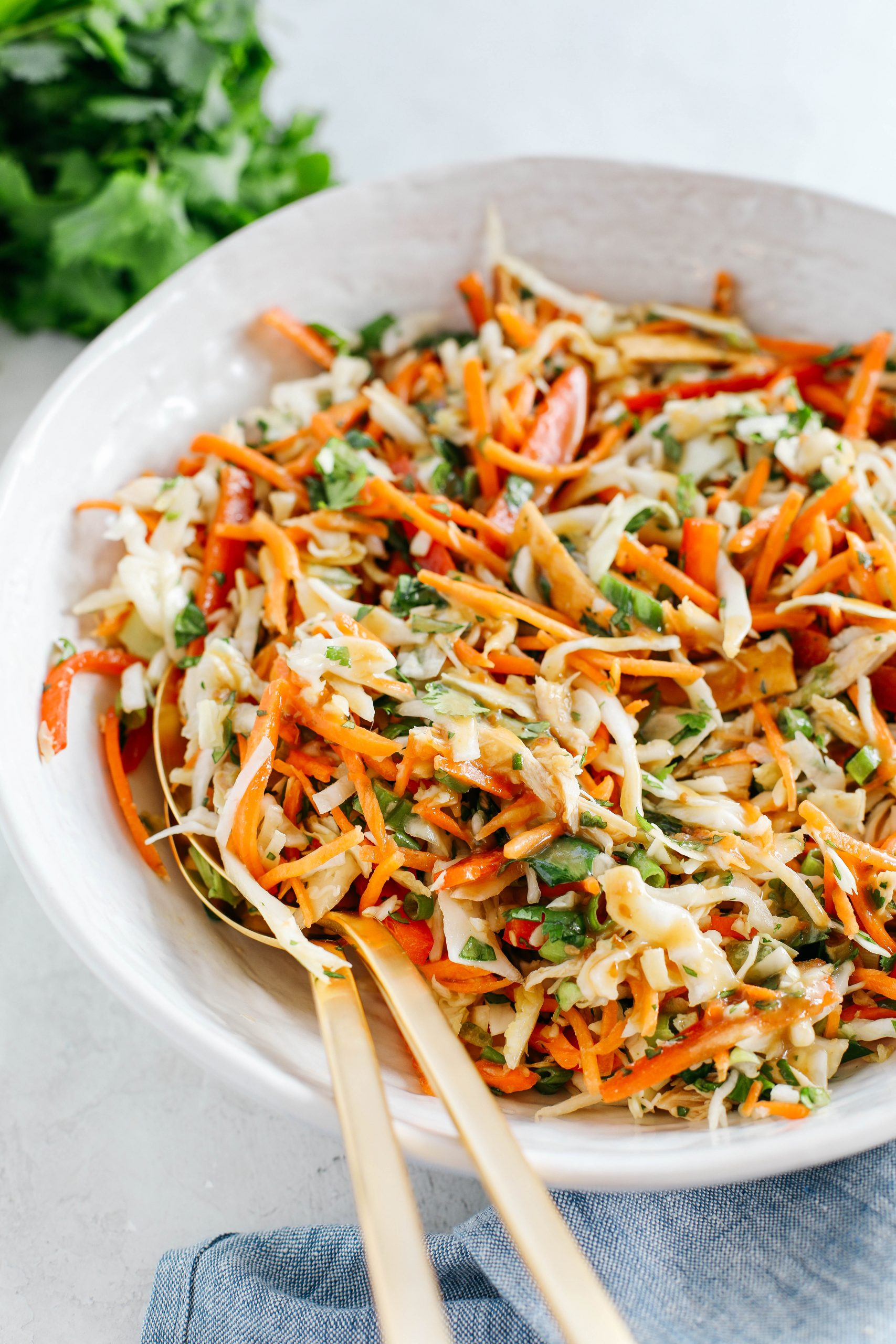 Fresh and crunchy Thai Chicken Salad filled with cabbage, bell peppers, carrots and cilantro all tossed together with a delicious ginger-sesame vinaigrette!