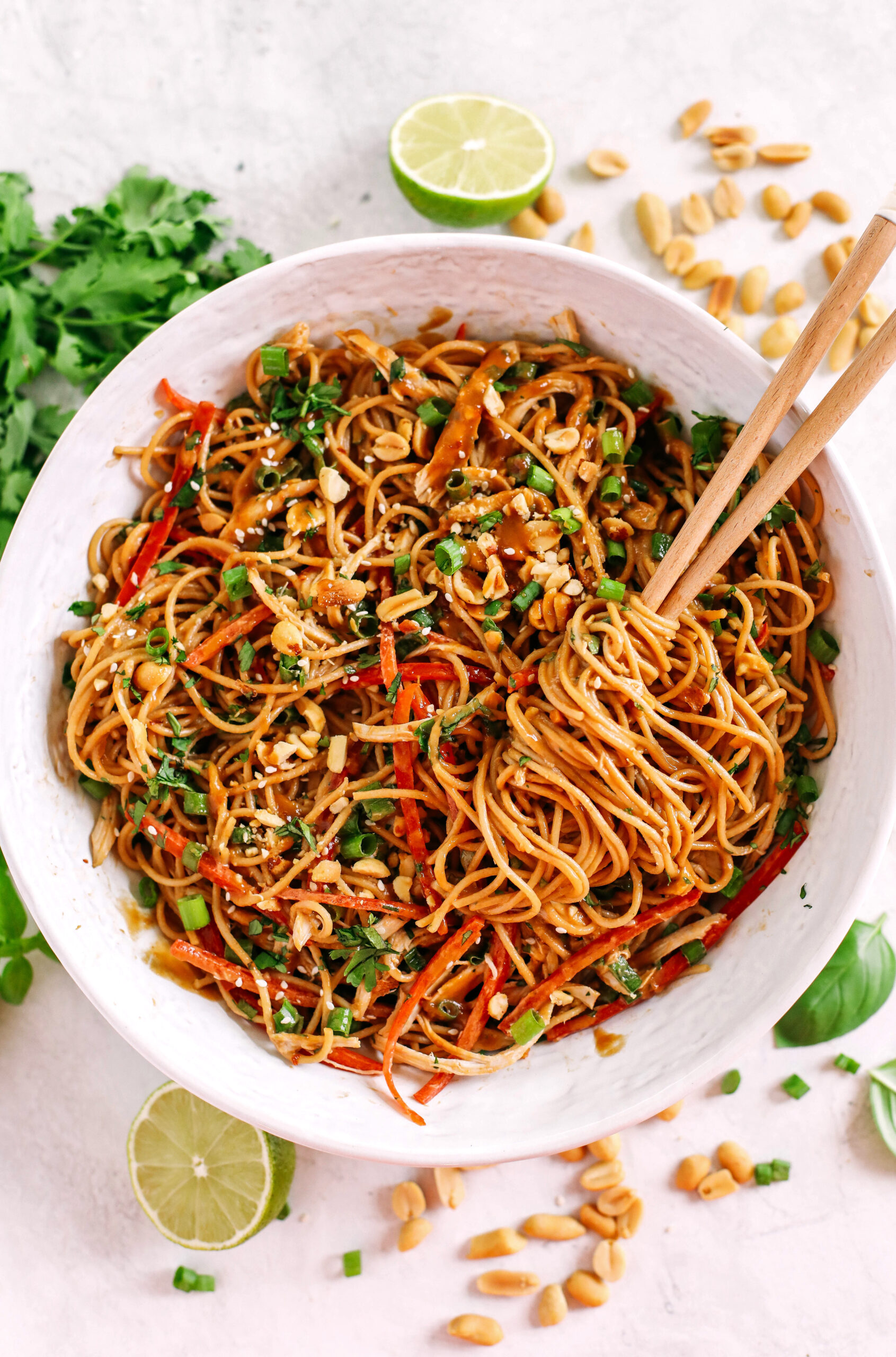 These Asian Peanut Noodles are loaded with shredded chicken, bell pepper, green onions, crunchy peanuts and fresh herbs all tossed together in a delicious peanut sauce!