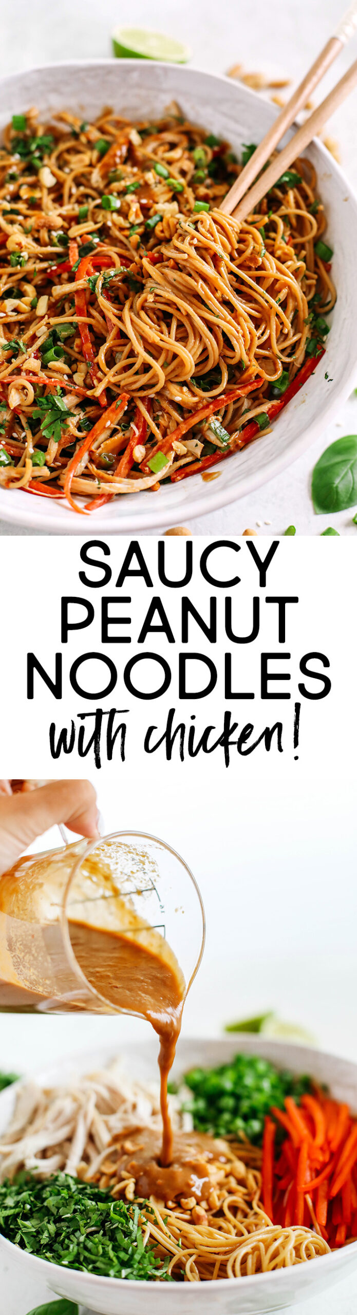 These Saucy Peanut Noodles are loaded with shredded chicken, bell pepper, green onions, crunchy peanuts and fresh herbs all tossed together in a delicious peanut sauce!